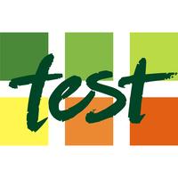TEST PREDYSPOZYCJI JĘZYKOWYCH WSTĘPEM DO KLASY DWUJĘZYCZNEJ.